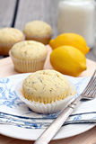 Lemon Poppy Seed Muffins Royalty Free Stock Image