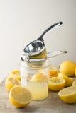 Lemon Press on Jar of Lemon Juice Royalty Free Stock Photo
