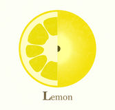 Lemon raster illustration Royalty Free Stock Photos