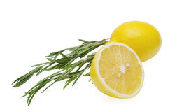 Lemon and rosemary branch Royalty Free Stock Photos