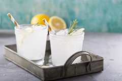 Lemon rosemary cocktail on a tray Royalty Free Stock Images