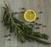 Lemon and rosemary Royalty Free Stock Images
