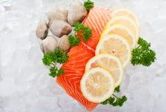 Lemon salmon royalty free stock photos