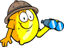 Lemon scout or explorer with binoculars Stock Photography