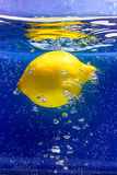 Lemon in the sea. Yellow lemon in blue water stock photo
