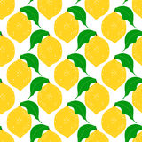 Lemon seamless background. Royalty Free Stock Image