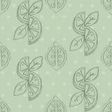 Lemon seamless background Royalty Free Stock Images