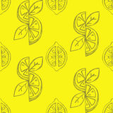 Lemon seamless background Stock Photos