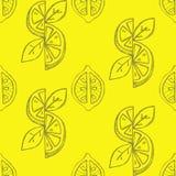 Lemon seamless background Stock Photos