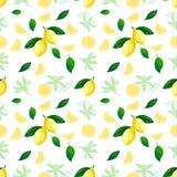 Lemon seamless pattern. Lemons cocktail citrus fruit texture summer yellow fresh repeating vector background royalty free illustration