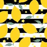 Lemon seamless pattern on striped background. Vector illustration Stock Photos