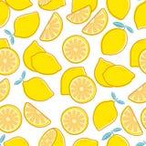 Lemon seamless pattern. Tropical citrus exotic fruit print. Yellow lemons summer floral repeating vector decorative stock illustration