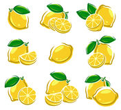 Lemon set. Vector Stock Photo