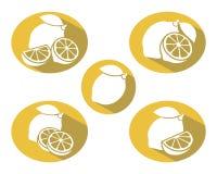 Lemon set. Vector Stock Images