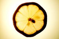 Lemon slice Stock Images