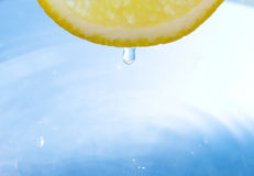Lemon slice Royalty Free Stock Photos