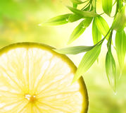Lemon slice. Over abstract green background royalty free stock image