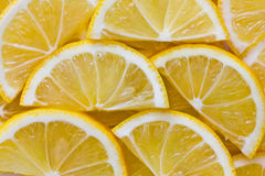 Lemon slice background Stock Photography