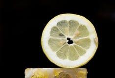 Lemon slice in black Stock Photos