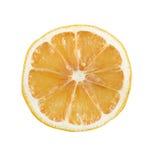 Lemon slice Royalty Free Stock Photos