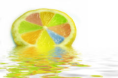 Lemon slice with diferent colors Stock Images