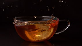 Lemon slice falling in cup of tea stock footage