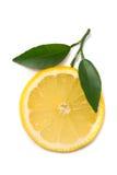 Lemon slice with fresh leaves Stock Photography