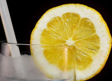 Lemon Slice in Glass Royalty Free Stock Photo
