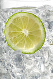 Lemon slice in ice cubes Royalty Free Stock Photography