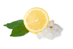 Lemon slice with ice and two leaves Stock Photos