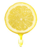 Lemon Slice Royalty Free Stock Photo