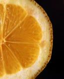 Lemon slice macro isolated on black Royalty Free Stock Photo