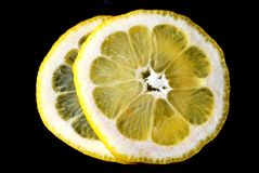 Lemon Slice macro Royalty Free Stock Images