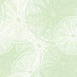 Lemon slice pattern Stock Images