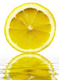 Lemon slice with reflection in water Stock Images