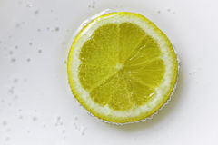 Lemon Slice. ,water,soda water stock image