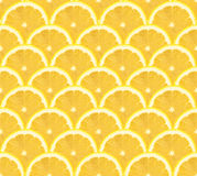 Lemon sliced pattern, seamless background Royalty Free Stock Photos