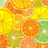 Lemon slices Royalty Free Stock Photo