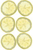 Lemon slices Stock Photography