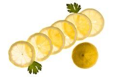 Lemon slices Royalty Free Stock Photography