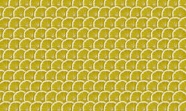 Lemon slices. Thin lemons slices folded into rows as background Stock Photos