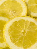 LEMON SLICES. On white background Royalty Free Stock Photos