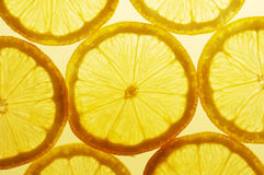 Lemon slices. Fresh lemon slices Royalty Free Stock Photography