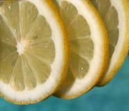 Lemon slices. 3 lemon slices over swimming pool water Royalty Free Stock Image