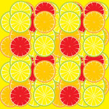 Lemon slices background Royalty Free Stock Photo