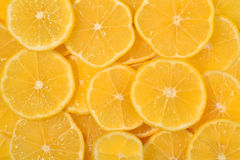 Lemon slices background Stock Photography