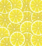 Lemon Slices Background Royalty Free Stock Images