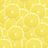 Lemon slices background Royalty Free Stock Photo