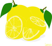 Lemon slices, collection of  illustrations Stock Photo