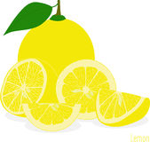 Lemon slices, collection of  illustrations Stock Image